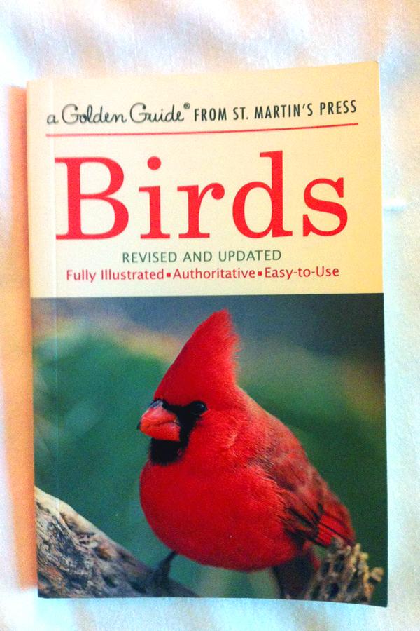 "Abbildung Buchcover ""Birds - Fully illustrated, Autoritative, Easy to use"
