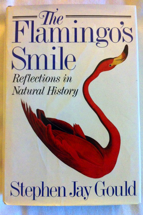 "Abbildung Buchcover ""The Flamingo's Smile - Reflections in Natural History"""