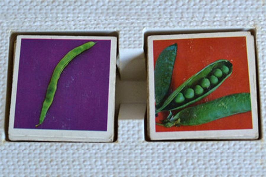 Abbildung zweier Bilder des klassischen Memoryspiels