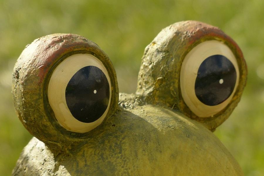Humoristische Illustration eines Eyecatchers: Ein Pappmachéfrosch mit prägnanten Stilaugen